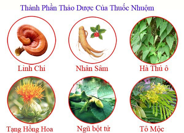 thanh-phan-thao-duoc2